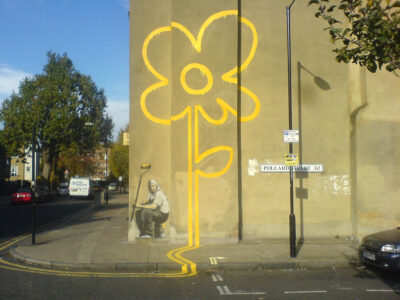 Flower on wall