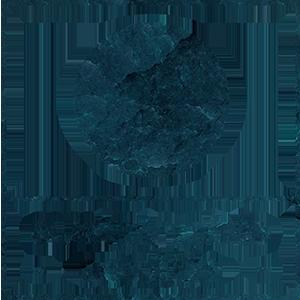 Sustainable-Seattle