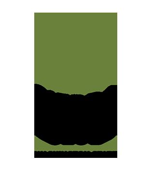 SC-Washington-Chapter-Logo